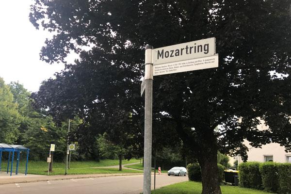 Bild von Günzburg